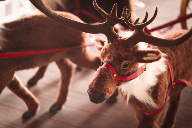Donde viajar en Navidad Laponia